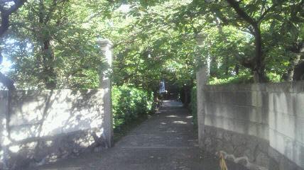 今回の打ち始め、20番札所龍台院の山門です