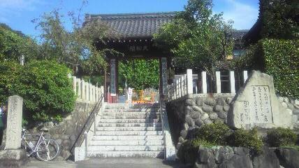 15番札所洞雲院の山門です