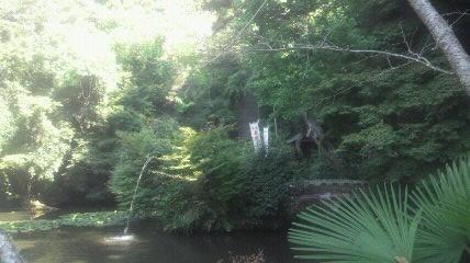 47番札所持宝院のふもとにある庭です。