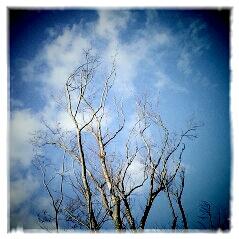 2011-12-24-00-23-20-036.jpg
