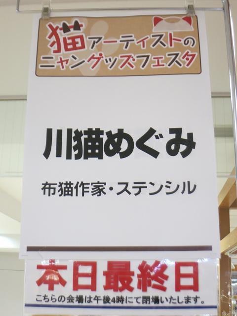 IMG_8674.jpg