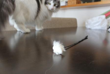 ピースとネズミのおもちゃ②