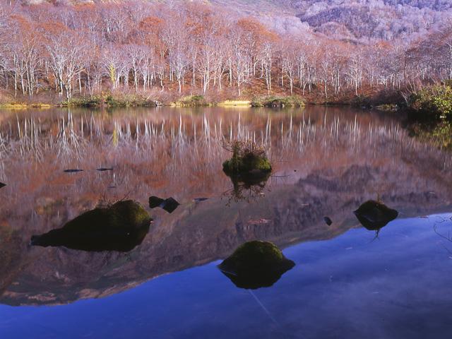 晩秋の鶴間池