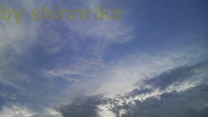 ウロコ雲だけが秋なの?