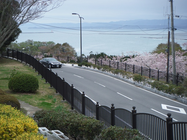 三崎公園2012港を望む