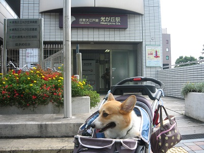 2011_0911_110805-IMG_7023小