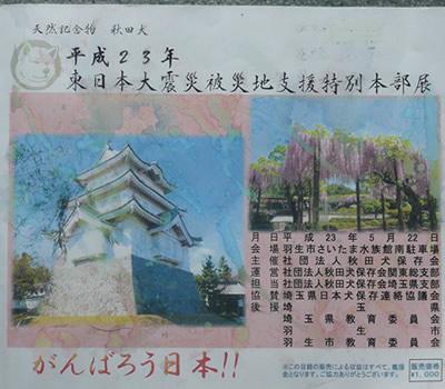hyoshi511.jpg