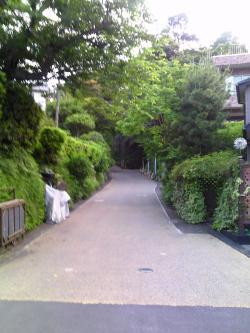 亀ヶ谷坂_convert_20100616223219