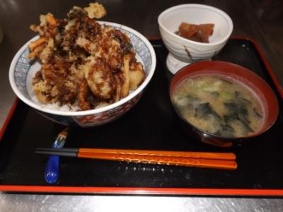 ハモかき揚げ丼 (6)