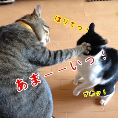 meeting in shinjuku1 resized
