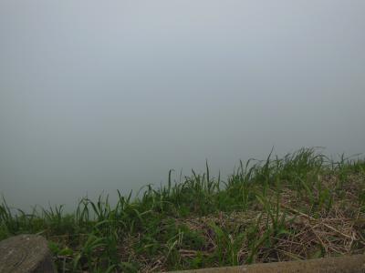 桃岩(霧)
