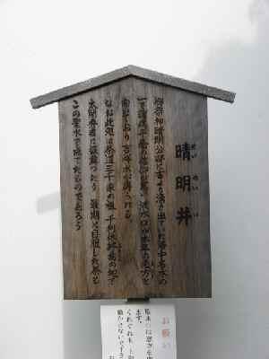 20081228_557611.jpg