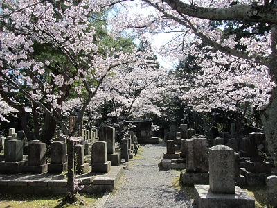 IMG_9691 会津藩墓地
