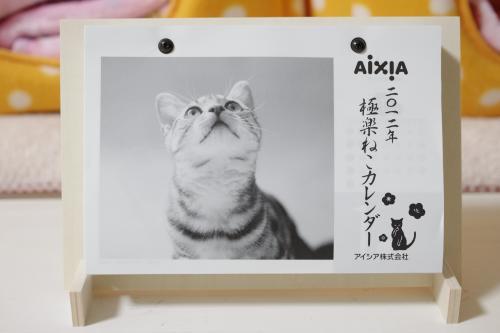 aisia11_c.jpg