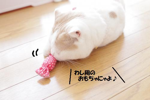 amamata4.jpg