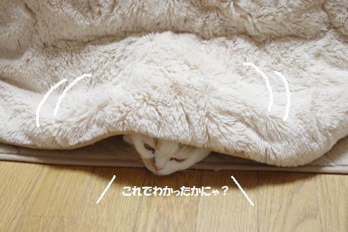 amaoko3.jpg