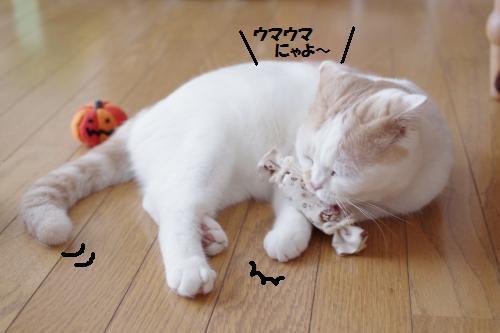 amataka7.jpg