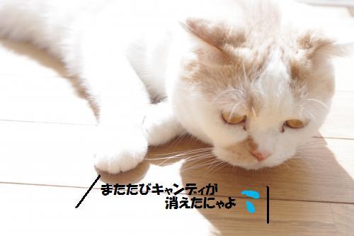 ashomata6.jpg
