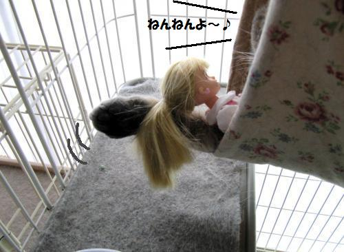 ashori1.jpg