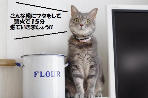 ashoryo1.jpg