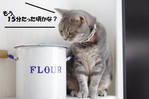 ashoryo3.jpg
