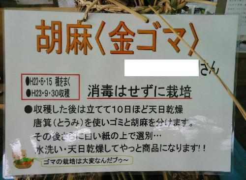 17_20111012054851.jpg