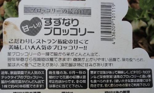 5_20120103074528.jpg