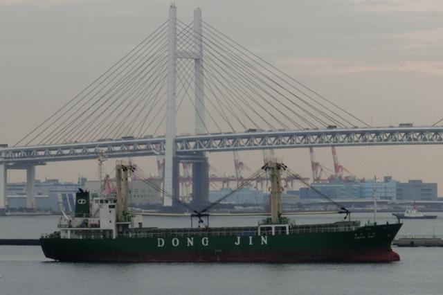コンテナ船 DONG JIN