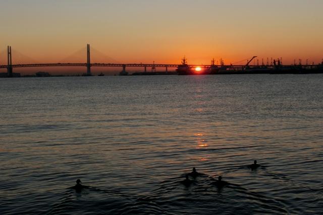 夜明けの臨港パーク