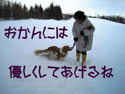 IMG_0132.jpg