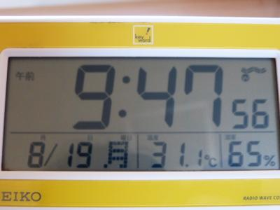 P1130051.jpg