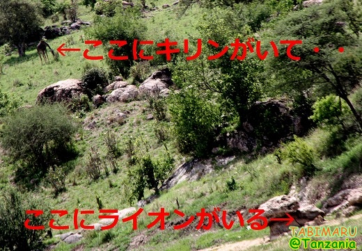 new4-2013121511321.jpg