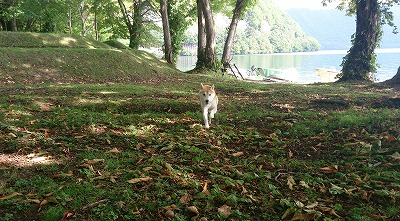湖畔で走る!!