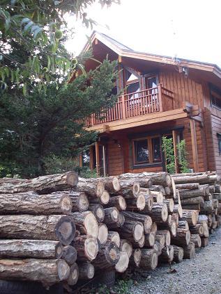 家の前の薪原木