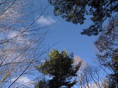 空(2013年11月)
