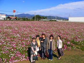 2010.10.29(コスモス、ふじやん) 036
