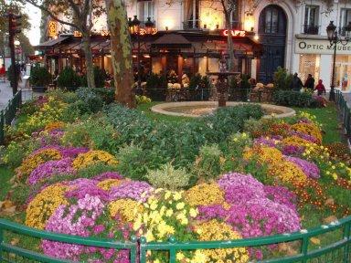 花いっぱいのpl. De la Contrescarpe広場downsize