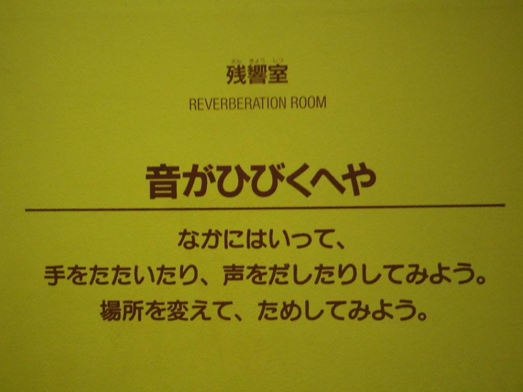 IMGP6168.jpg