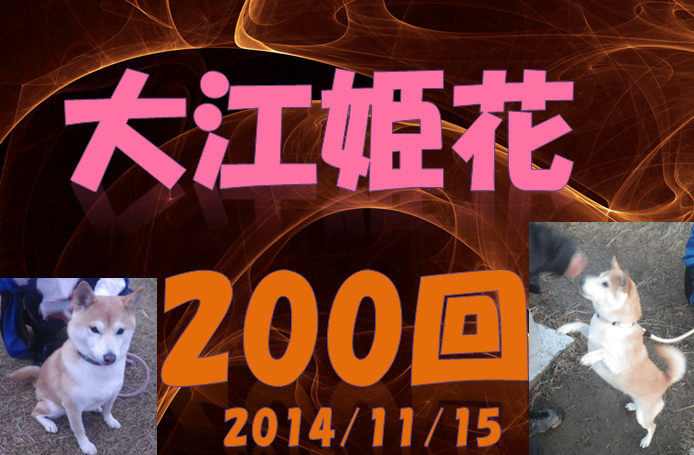 SnapCrab_NoName_2014-11-12_18-19-38_No-00.png