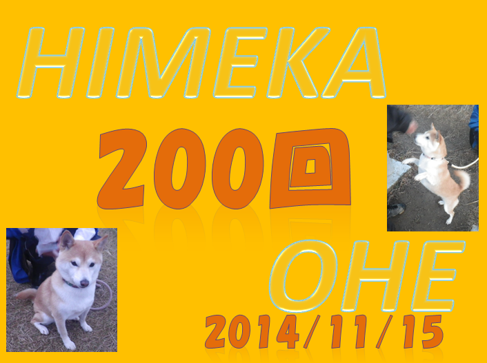 SnapCrab_NoName_2014-11-12_18-19-49_No-00.png