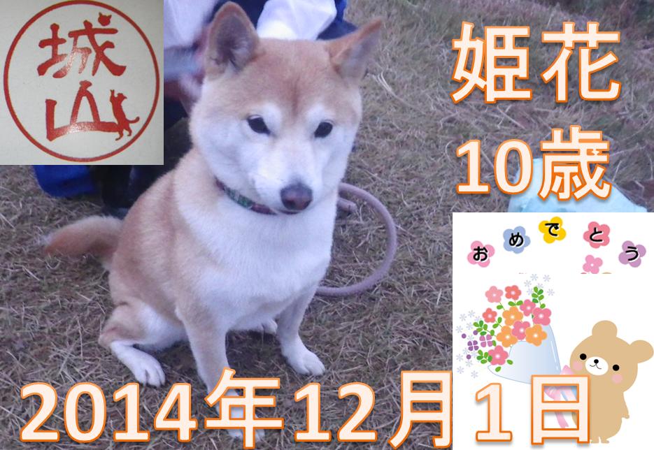 SnapCrab_NoName_2014-12-1_7-23-18_No-00.png