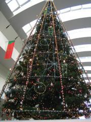 クリスマスツリー クイーンズスクエア