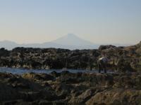 荒崎からの富士山
