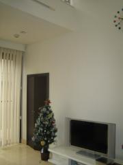 クリスマスツリーの大きさ
