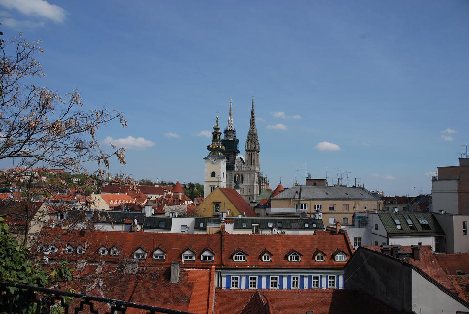 大聖堂を眺める