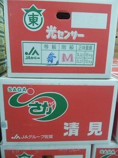sagakiyoton2.jpg
