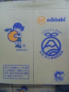 sizukiyo1.jpg