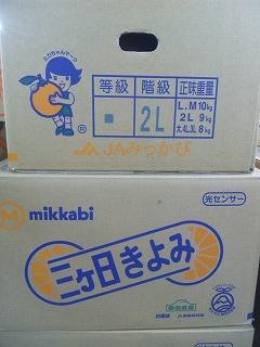 sizukiyo2.jpg