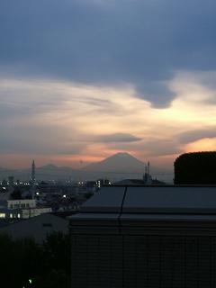 2010_11020008.jpg