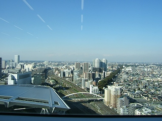 2010_11050066.jpg